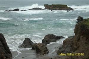 Mendocino Coast