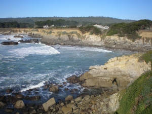 Sea Ranch coast near Gualala