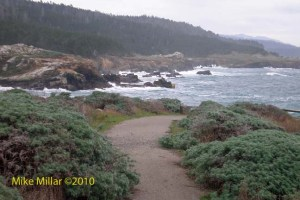 Salt Point Path