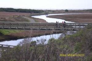 Cheney Creek Bridge