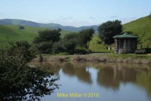 Helen Putnam Fish Pond