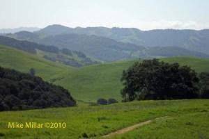 Helen Putnam Panorama