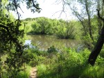 Fox Pond at Healdsburg Ridge