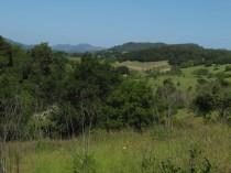 View from Healdsburg Ridge