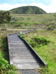 Boardwalk on Kortum Trail
