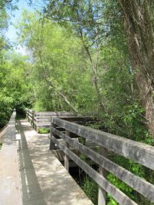 Ragle Ranch Boardwalk
