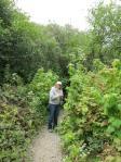 Russian Gulch overgrown path