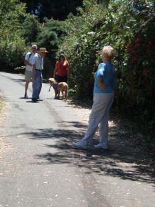 Brush Creek Trail at Yulupa Circle