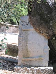 Rural Cemetery Taylor headstone heavily overgrown by tree