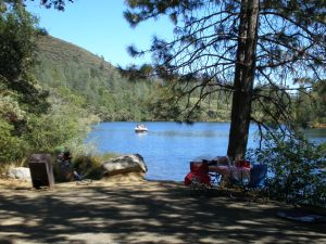 Oak Bottom Trail by Whiskeytown Lake
