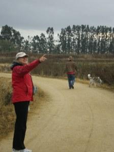 Wide flat path at Ellis Creek Petaluma