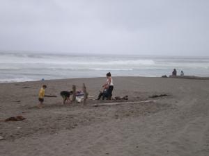 Beach Play Bodega Dunes