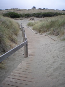 Boardwalk Bodega Dunes