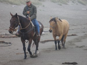 Beach Horses at Bodega Dunes