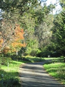 Bartholomew Park path