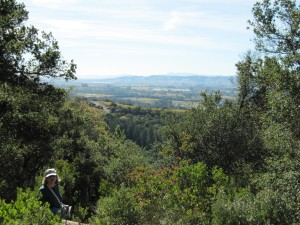 Bartholomew Park view of Sonoma Valley to Bay
