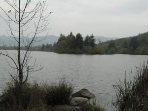 Spring Lake best view