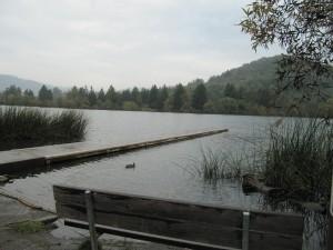 Spring Lake boat dock