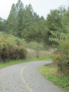 Spring Lake trail