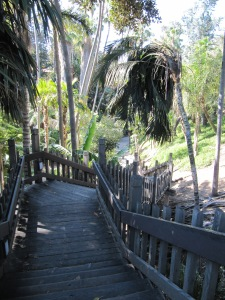 Palm Canyon - Balboa Park