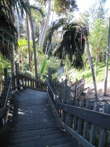Palm Canyon - Balboa Park