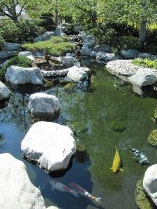 Japanese Garden - Balboa Park