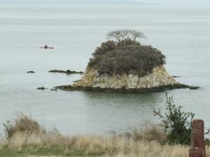 Rat Rock Island