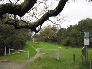 Oak Hill Park Dog Run