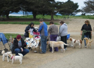 PIDO table at Pt Isabel