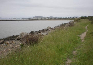 Dirt Trail near Pt Isabel looking north