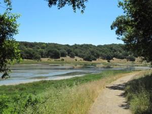 Cemetary Marsh