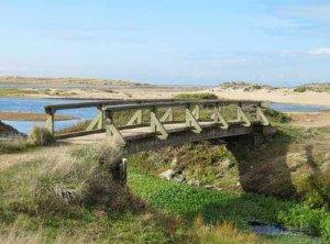 Bridge over Abbotts Lagoon