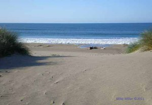 No prints at Limantour Beach on Drakes Bay