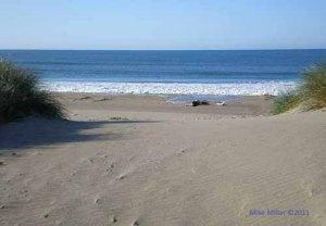 No prints at Limantour Beach on Drakes Bay