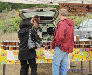 Bodega Bay Farmers Market Jam
