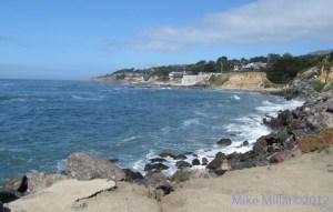 Fitgerald Marine Reserve Coast