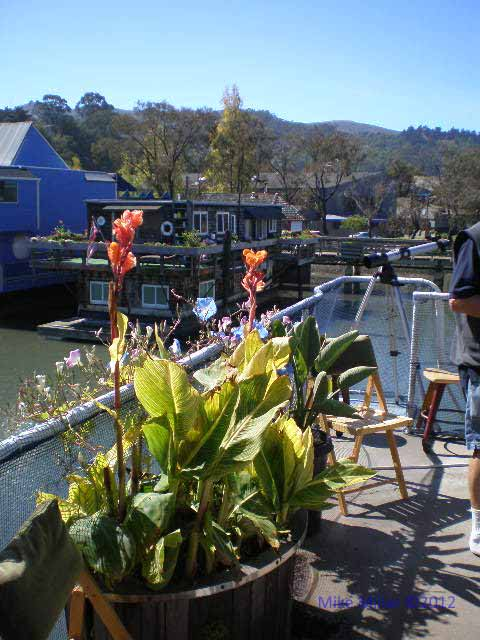 Sausalito Floating Homes