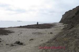 Pillar Point headlands