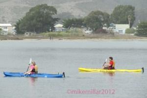 Kayaks at Pillar Point Harbor