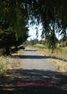 Roseland Creek Trail South