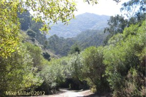San Pedro Valley Trail