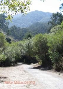 San Pedro Valley County Park