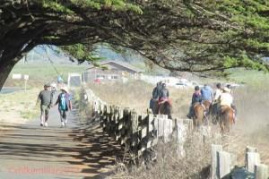 Half Moon Bay State Beach 2 trails