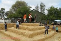 Tolay Lake Festival