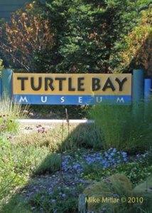Turtle Bay Exploration