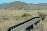 Kortum Trail Boardwalk