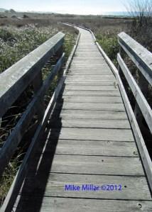 Kortum Trail Bridge facing south