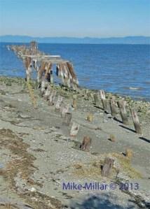 Pt Pinole old pier