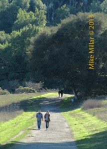 Start of Pt Reyes Bear Valley Trail