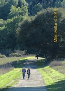 Start of Pt Reyes Bear Valley Trail